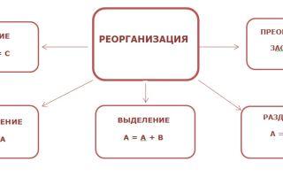 Реорганизация учредителя ООО — пошаговая инструкция