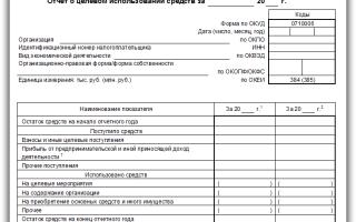 Отчет о целевом использовании полученных средств — Форма 6 Бухгалтерского баланса