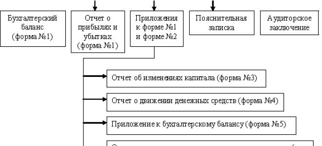 Формы бухгалтерской отчетности