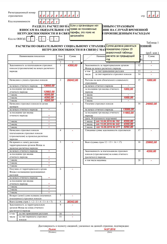 Раздел 1 формы 4-ФСС