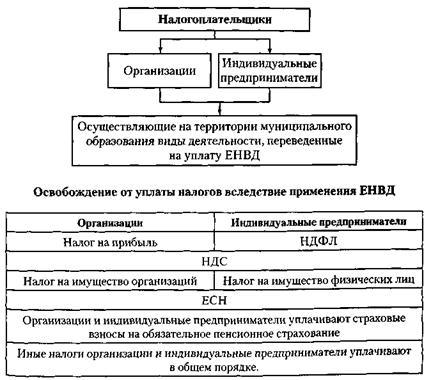 схема для плательщиков ЕНВД
