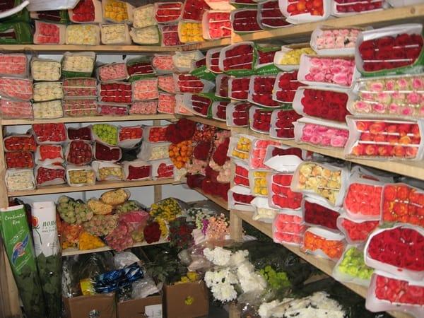 Торговля парфюмерией и косметикой код оквэд